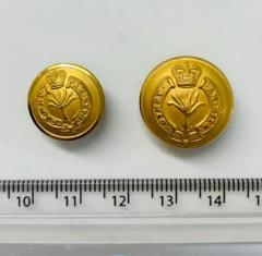 Welsh Guards Button, button, gold button, military button, military, gold, label, embellishment, accessory