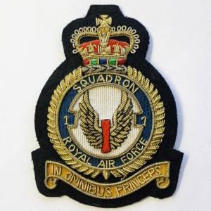 1st Squadron Blazer badge, badge, Cap, Cap Badge, Blazer Badge, Vintage badge, military, military badge, military button